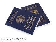 Купить «Паспорта Республики Беларусь», фото № 375115, снято 19 июля 2008 г. (c) Андрей Рыбачук / Фотобанк Лори