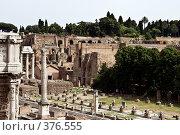 Купить «Руины римского форума. Италия», фото № 376555, снято 24 июня 2007 г. (c) Павел Коновалов / Фотобанк Лори
