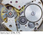 Купить «Механизм наручных часов», фото № 378775, снято 28 июля 2008 г. (c) pzAxe / Фотобанк Лори
