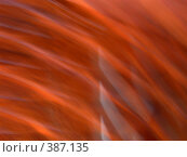 Купить «Абстракция красно-оранжевая закрученная», фото № 387135, снято 28 июля 2008 г. (c) Татьяна Заварина / Фотобанк Лори