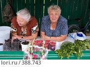 Город Углич. Пенсионеры (2008 год). Редакционное фото, фотограф Юрий Синицын / Фотобанк Лори