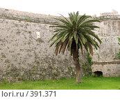 Купить «Родос. Стены старого города», фото № 391371, снято 14 мая 2008 г. (c) Хименков Николай / Фотобанк Лори