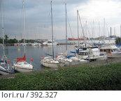 Купить «Озеро с яхтами», фото № 392327, снято 24 июня 2007 г. (c) Алла Кригер / Фотобанк Лори