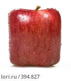 Купить «Квадратное яблоко», фото № 394827, снято 18 июня 2008 г. (c) Валерия Потапова / Фотобанк Лори