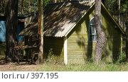 Купить «В лесу на Киевском море», фото № 397195, снято 28 июня 2008 г. (c) Дмитрий Шепель / Фотобанк Лори