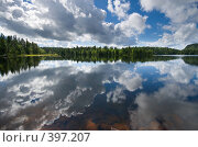 Купить «Северное озеро, золотое дно», фото № 397207, снято 9 августа 2008 г. (c) Tamara Kulikova / Фотобанк Лори