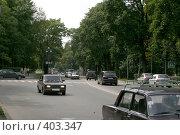 Купить «Зеленый городской перекресток», фото № 403347, снято 18 ноября 2018 г. (c) Сергей  Ушаков / Фотобанк Лори