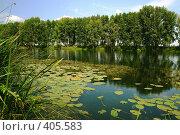 Купить «Озеро Кривое», фото № 405583, снято 15 августа 2008 г. (c) Виктор Ковалев / Фотобанк Лори