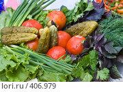 Купить «Зелень и солёные овощи на праздничном столе», фото № 406979, снято 18 апреля 2008 г. (c) Федор Королевский / Фотобанк Лори