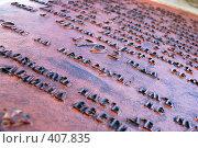 Купить «Фрагмент медной пластины на центральном столбе Троице-Сергиевой Лавры», фото № 407835, снято 17 августа 2008 г. (c) Ekaterina Chernenkova / Фотобанк Лори
