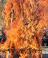 Большой огонь, фото № 412027, снято 18 февраля 2007 г. (c) A Челмодеев / Фотобанк Лори