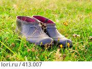 Калоши на полянке. Стоковое фото, фотограф Александр Лядов / Фотобанк Лори