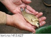 Купить «Карасик в руках рыбака», фото № 413627, снято 29 июля 2008 г. (c) Голофеева Галина / Фотобанк Лори