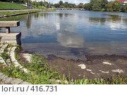 Купить «Пейзаж», фото № 416731, снято 21 августа 2008 г. (c) Рягузов Алексей / Фотобанк Лори