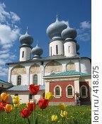 Купить «Тихвинский мужской монастырь», фото № 418875, снято 25 мая 2008 г. (c) Светлана Кудрина / Фотобанк Лори