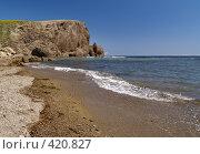 Купить «Морской берег», фото № 420827, снято 16 августа 2008 г. (c) Олег Рубик / Фотобанк Лори