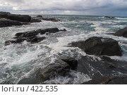Купить «Побережье Баренцева моря. Зеленецкая губа», фото № 422535, снято 31 июля 2008 г. (c) Роман Коротаев / Фотобанк Лори