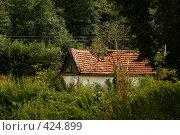 Купить «Заброшенный дом в лесу», фото № 424899, снято 17 августа 2008 г. (c) Иван Мельниченко / Фотобанк Лори