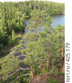 Купить «Валаамский берег, вид на залив», фото № 425179, снято 6 августа 2008 г. (c) Морковкин Терентий / Фотобанк Лори