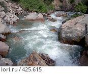 Купить «Горная река», фото № 425615, снято 7 мая 2005 г. (c) Михаил Браво / Фотобанк Лори