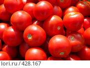 Купить «Спелые помидоры», фото № 428167, снято 7 августа 2008 г. (c) Николай Коржов / Фотобанк Лори