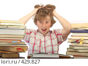 Купить «Накануне экзамена», фото № 429827, снято 29 августа 2008 г. (c) Георгий Марков / Фотобанк Лори