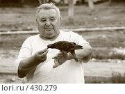 Купить «Голубь», фото № 430279, снято 23 августа 2008 г. (c) Владимир Кузин / Фотобанк Лори