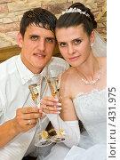 Купить «Свадьба. Молодожёны с бокалами шампанского.», фото № 431975, снято 23 августа 2008 г. (c) Федор Королевский / Фотобанк Лори