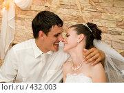 Купить «Свадьба. Молодожёны.», фото № 432003, снято 23 августа 2008 г. (c) Федор Королевский / Фотобанк Лори