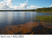 Купить «Лесное озеро», фото № 432083, снято 23 августа 2008 г. (c) Катыкин Сергей / Фотобанк Лори