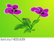 Купить «Цветы фиалки (векторный рисунок)», иллюстрация № 433639 (c) Юрий Брыкайло / Фотобанк Лори