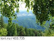 Купить «Березовое окно в горы», фото № 433735, снято 5 августа 2008 г. (c) Петров Алексей / Фотобанк Лори