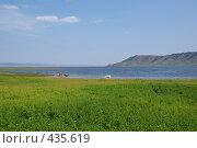 Купить «Пейзаж с купанием коров», фото № 435619, снято 19 июля 2008 г. (c) Виталий Попов / Фотобанк Лори