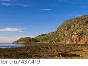 Купить «Курорты крайнего севера. Губа Воронья, побережье Баренцева моря, отлив», фото № 437419, снято 6 августа 2008 г. (c) Роман Коротаев / Фотобанк Лори
