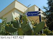 Купить «Табличка с номером дома», фото № 437427, снято 28 июля 2008 г. (c) A Большаков / Фотобанк Лори
