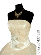 Купить «Свадебное платье», фото № 437539, снято 19 августа 2008 г. (c) Goruppa / Фотобанк Лори