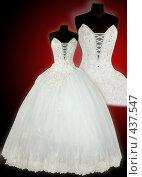 Купить «Свадебные платья», фото № 437547, снято 20 сентября 2019 г. (c) Goruppa / Фотобанк Лори