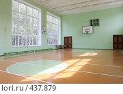 Купить «Школьный спортзал», эксклюзивное фото № 437879, снято 21 августа 2008 г. (c) Дмитрий Неумоин / Фотобанк Лори