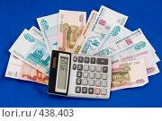 Купить «Выкроить из бюджета...», фото № 438403, снято 3 сентября 2008 г. (c) Федор Королевский / Фотобанк Лори