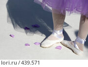 Купить «Балерина», фото № 439571, снято 26 июля 2008 г. (c) Морозова Татьяна / Фотобанк Лори