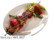 Купить «Жареное мясо», фото № 441907, снято 21 мая 2008 г. (c) Коваль Василий / Фотобанк Лори