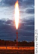 Купить «Факел», фото № 443211, снято 13 июня 2008 г. (c) Жданович Юрий / Фотобанк Лори