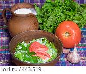 Купить «Салат по-пловдивски или овощной салат с йогуртом», фото № 443519, снято 6 сентября 2008 г. (c) Михаил Котов / Фотобанк Лори