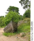 Купить «Лодка с выросшим в ней кустом. Берег острова Валаам», фото № 445099, снято 6 августа 2008 г. (c) Заноза-Ру / Фотобанк Лори