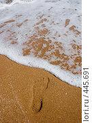 Купить «К морю. След на песке», фото № 445691, снято 16 августа 2008 г. (c) WalDeMarus / Фотобанк Лори