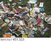 """Купить «""""Ненужные знания""""», фото № 451323, снято 3 июня 2006 г. (c) Артём Дудкин / Фотобанк Лори"""