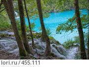 Купить «Везде вода», фото № 455111, снято 16 августа 2008 г. (c) Pukhov K / Фотобанк Лори