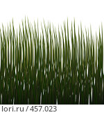 Купить «Трава», иллюстрация № 457023 (c) sav / Фотобанк Лори