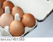 Купить «Куриные яйца в коробке», фото № 457583, снято 4 апреля 2008 г. (c) Юлия Смольская / Фотобанк Лори