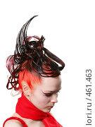 Купить «Креативная прическа», фото № 461463, снято 30 ноября 2007 г. (c) Efanov Aleksey / Фотобанк Лори
